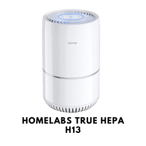 hOmeLabs True HEPA H13