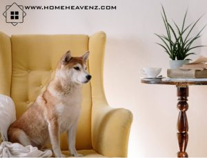 Home-heavenz-air purifier for pets