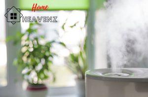 Home-heavenz-large-room-1