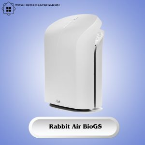 Rabbit Air BioGS 2.0 SPA-550A –Best Deodorization and Purification Energy Star Rated Air Purifier