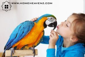 Best Air Purifier for Bird Owners in 2021 –Can You be Allergic to Bird Dander